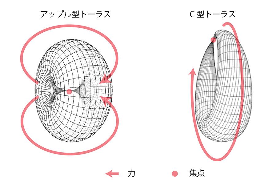 大きい焦点のトーラスと小さい焦点のトーラスの比較